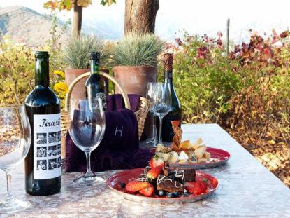 Chile: a terra dos grandes vinhos