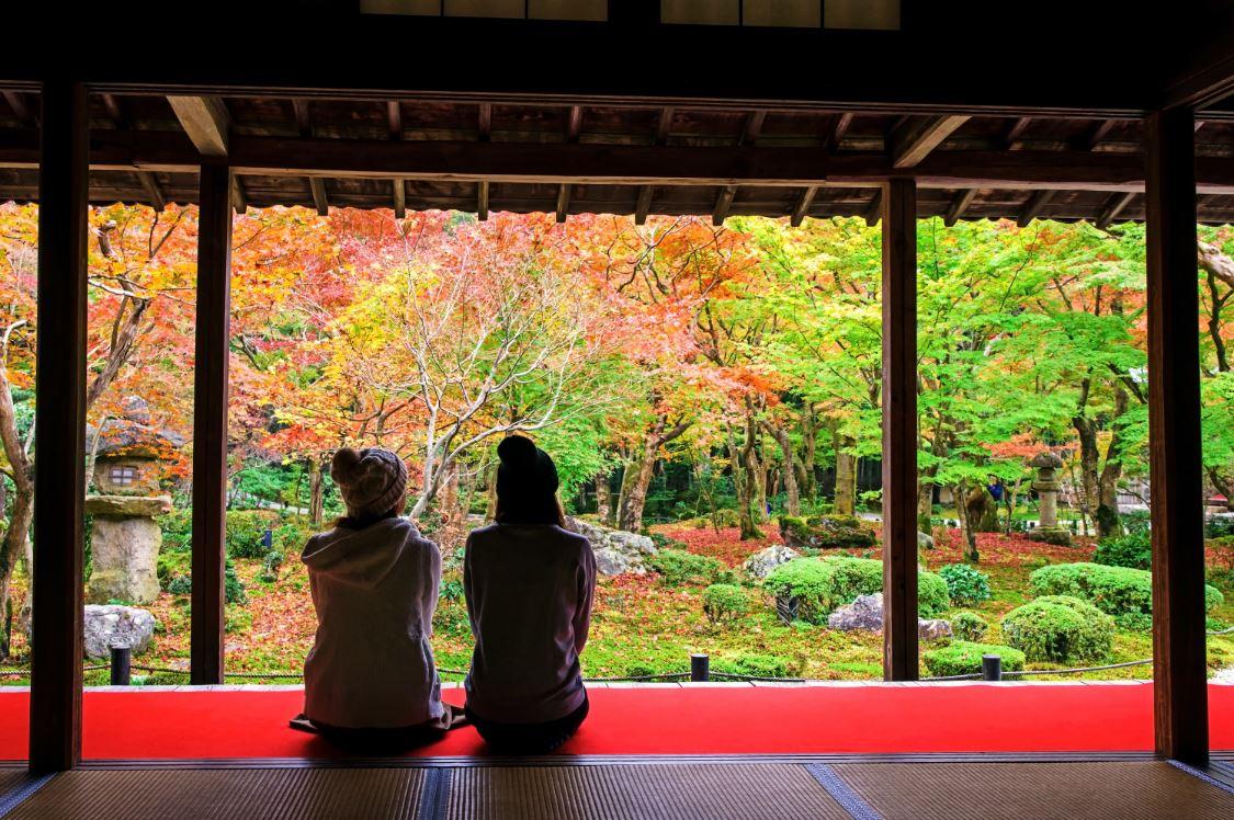Koyo zenzen: mudança gradual de coloração das folhas