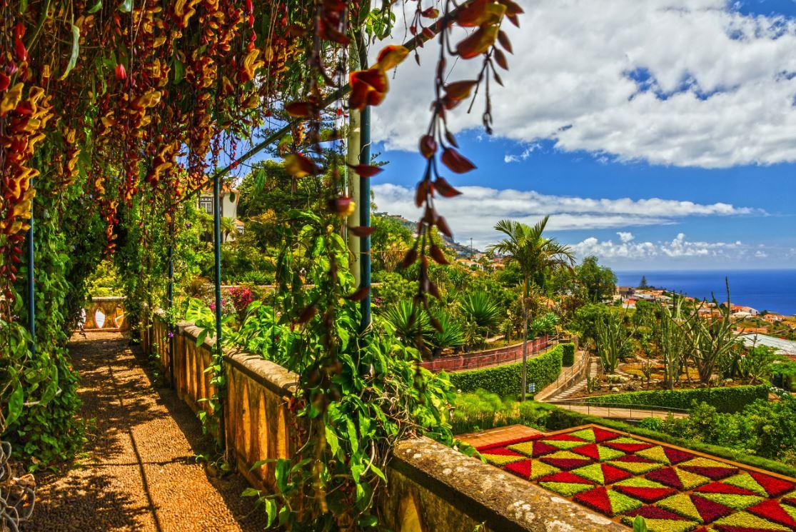 O lindo Jardim Botânico, em Funchal