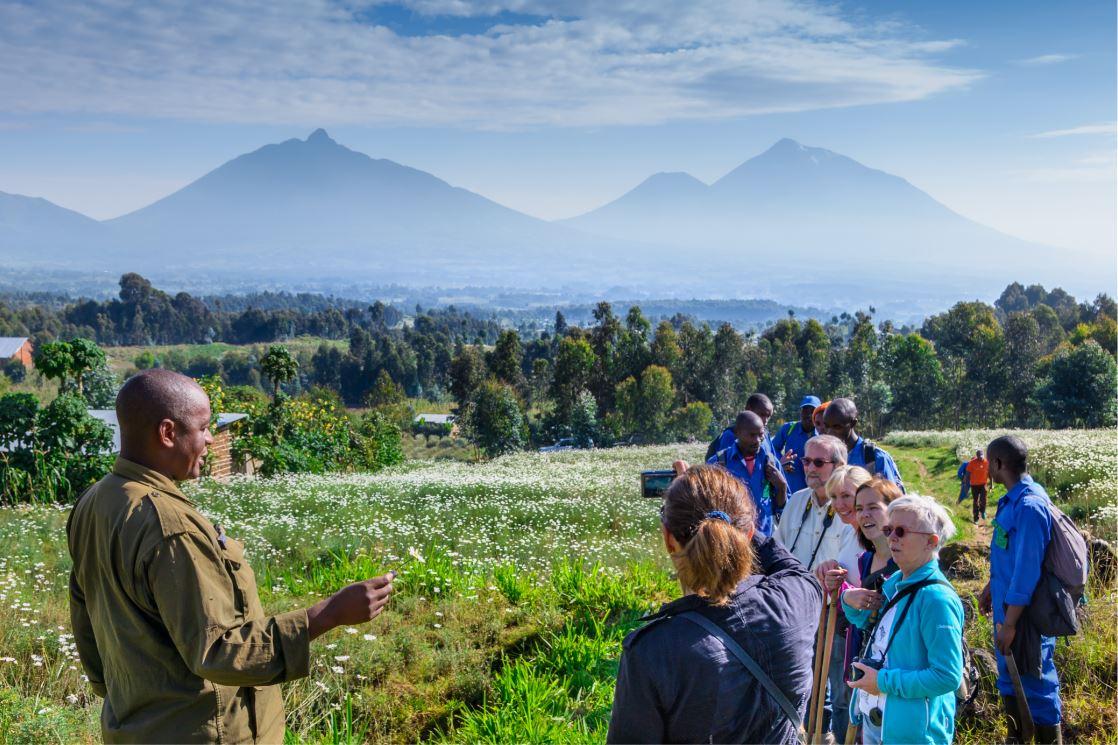 Guias do parque explicam em detalhes as regras da observação - Foto: Tetyana Dotsenko/Shuttertstock.com